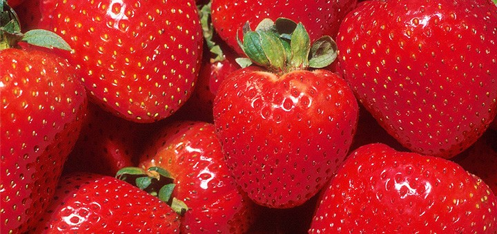 hdr-how-robots-could-save-strawberries-green-agriculture-and-feed-a-growing-population